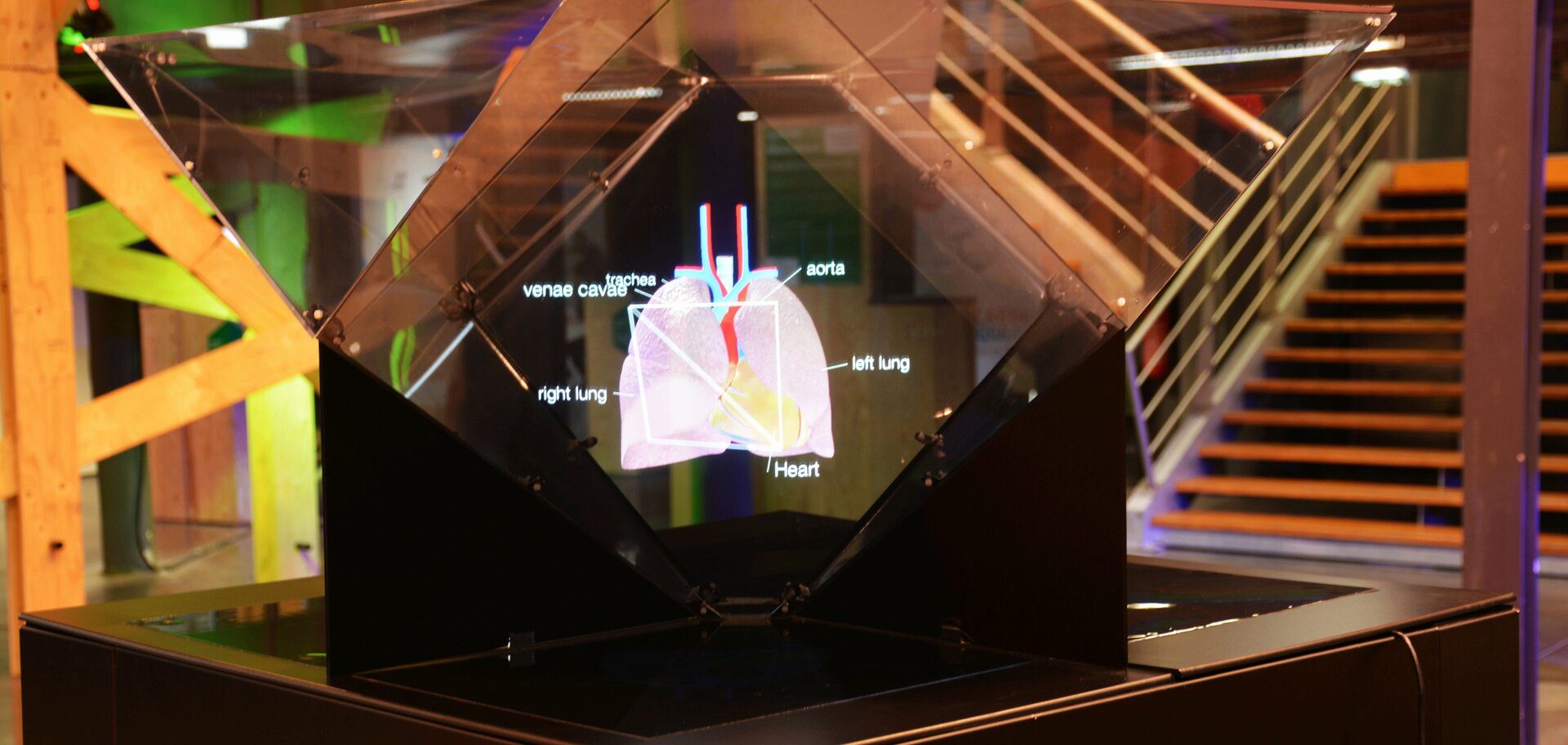 3D medical visualization on Holusion Focus